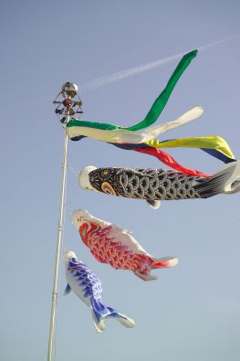 Flying Carp Kite