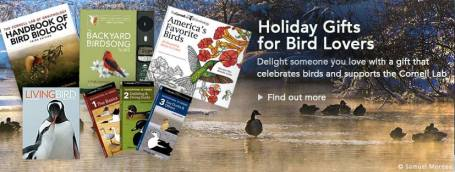 bird-gifts